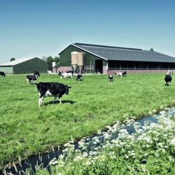 Bâtiments agricoles et commerciaux